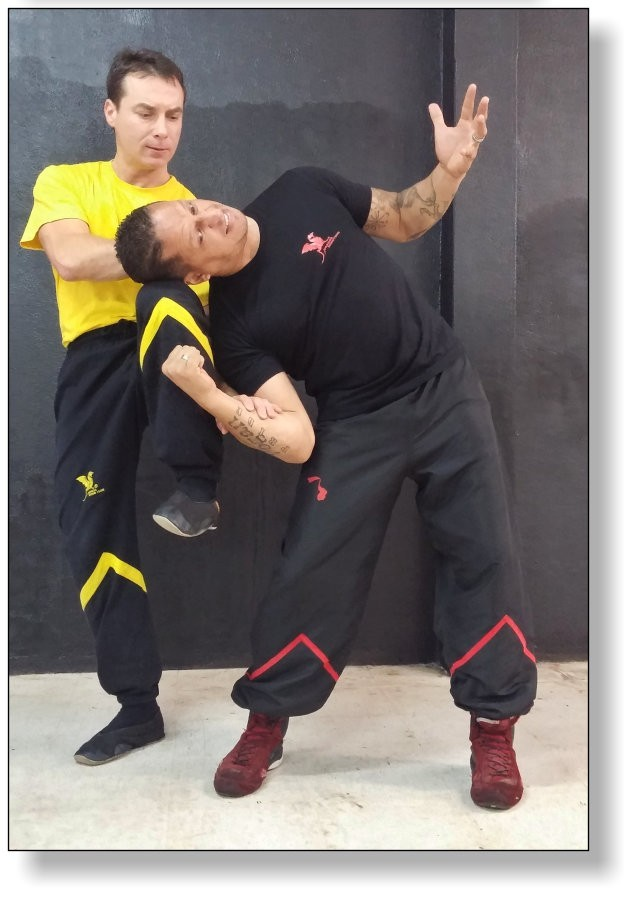 Application Wooden Dummy Wing Tsun - Dai-Sifu Martin Dragos with Guido Aires