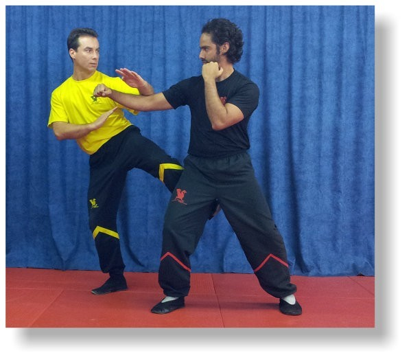 Individual lessons allow rapid progress with flexible working hours - Dragos WingTsun