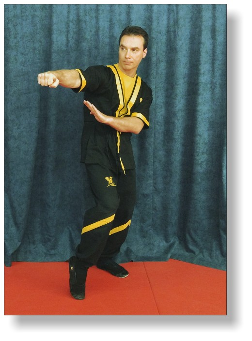 Dai-Sifu Martin Dragos - Chief Trainer of DRAGOS WING TSUN LEAGUE