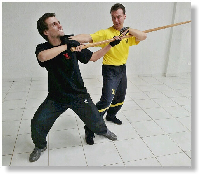 Bat Cham Dao - Eight Ways of the Knives of WingTsun (Dai Sifu Martin Dragos with Francisco Junior)
