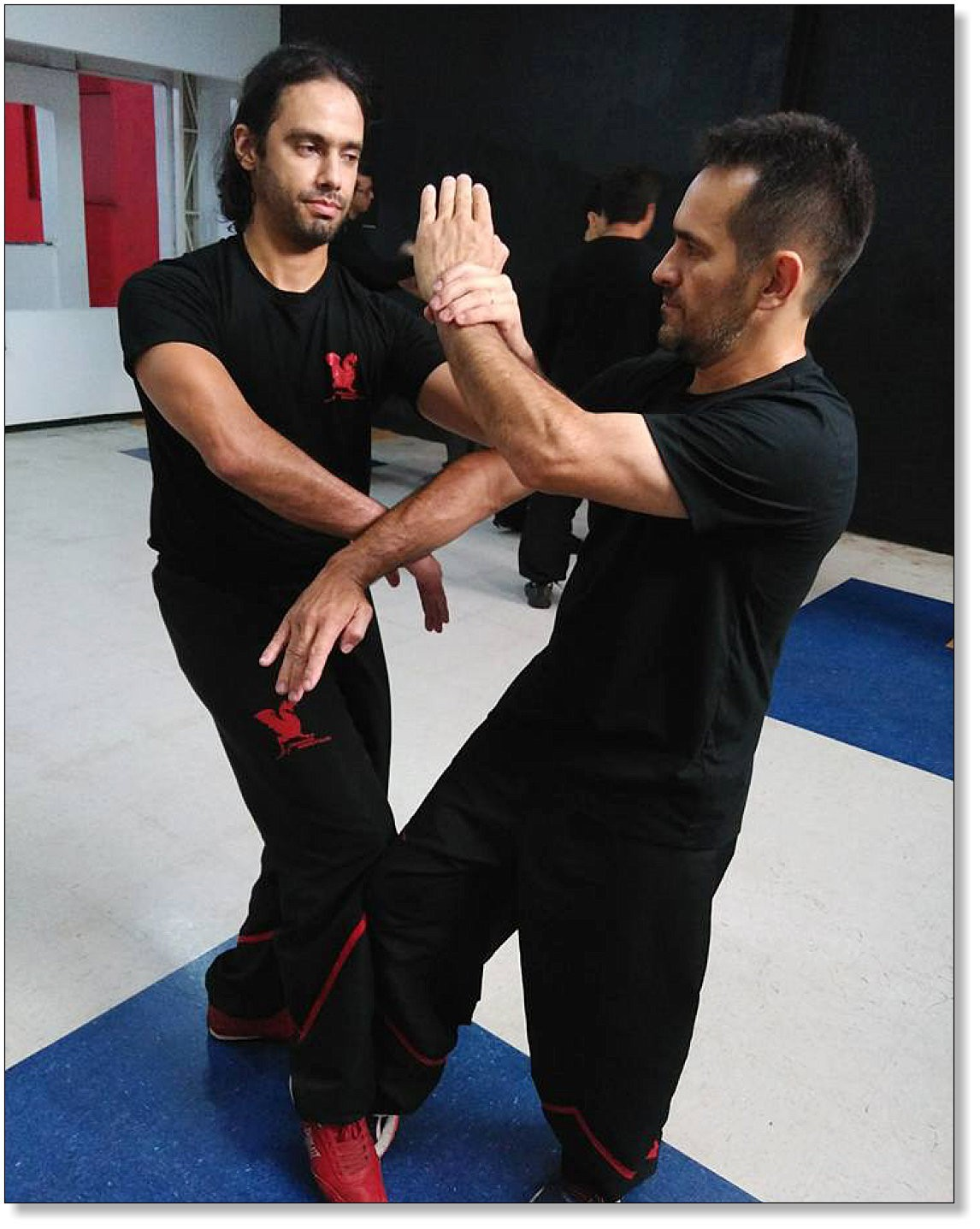 Complex movements are often only the logical implementation of simple principles - Dragos WingTsun