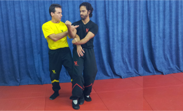 DRAGOS WING TSUN in France