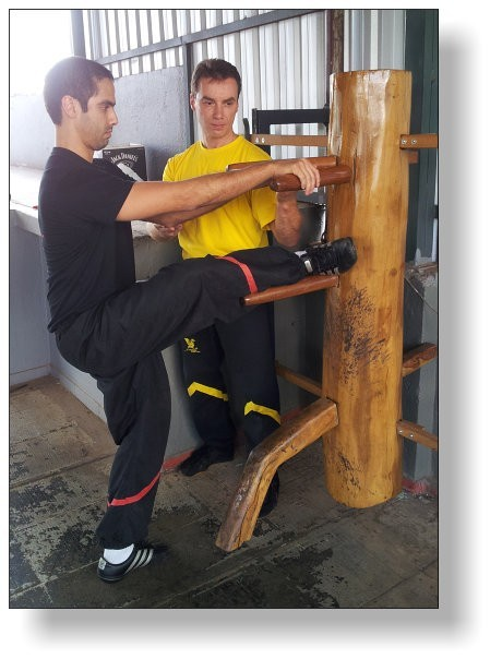 Dai-Sifu Martin Dragos teaching the Mok Yan Chong Form to Daniel Cavalcante