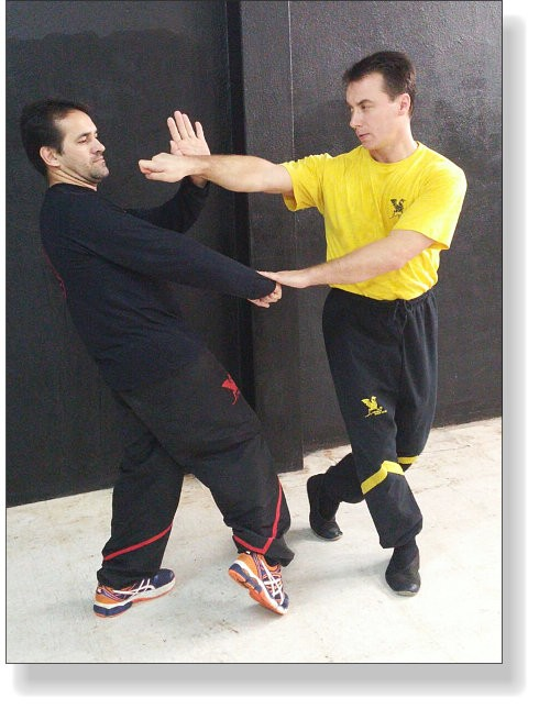 Wing Tsun. Djat-Sao, Crossing Step and Fen-On-Kuen - Dai-Sifu Dragos with Sifu Edmilson Matos