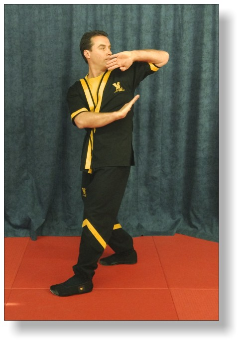 Dai-Sifu Martin Dragos Biu Tze Form (Elbow Strike)