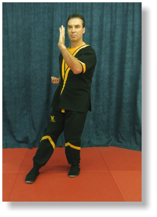 DRAGOS WING TSUN SIU NIM TAO - LITTLE IDEA, INTRODUCTORY FORM