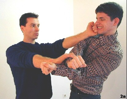 Figure 3 - Sifu's Punch hits the opponent