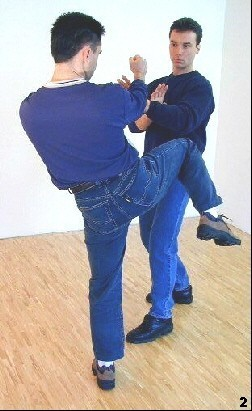 WingTsun Basics - Kick Defense