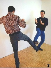 WingTsun Basics - Defense against kicks