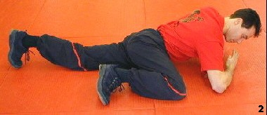 Wing Tsun Course, Fig. 2 - as his left ellbow and two legs form a triangle this position allows different actions in stable position