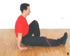 Wing Tsun Lesson 15, Fig. 2 - Sifu swings up and pushes from the ground