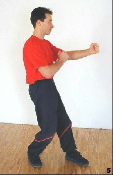 Wing Tsun Lesson 15, Fig. 5 - As soon as he is in standing position he keeps one leg in front